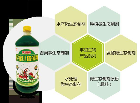 浓缩小球藻,小球藻厂家,小球藻价格